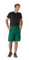 Planam Shorts Plaline, grün/ schwarz